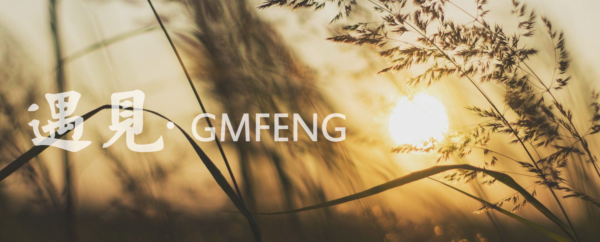 GMFENG